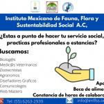 Instituto Mexicano De Fauna, Flora y Sustentabilidad Social A.C.
